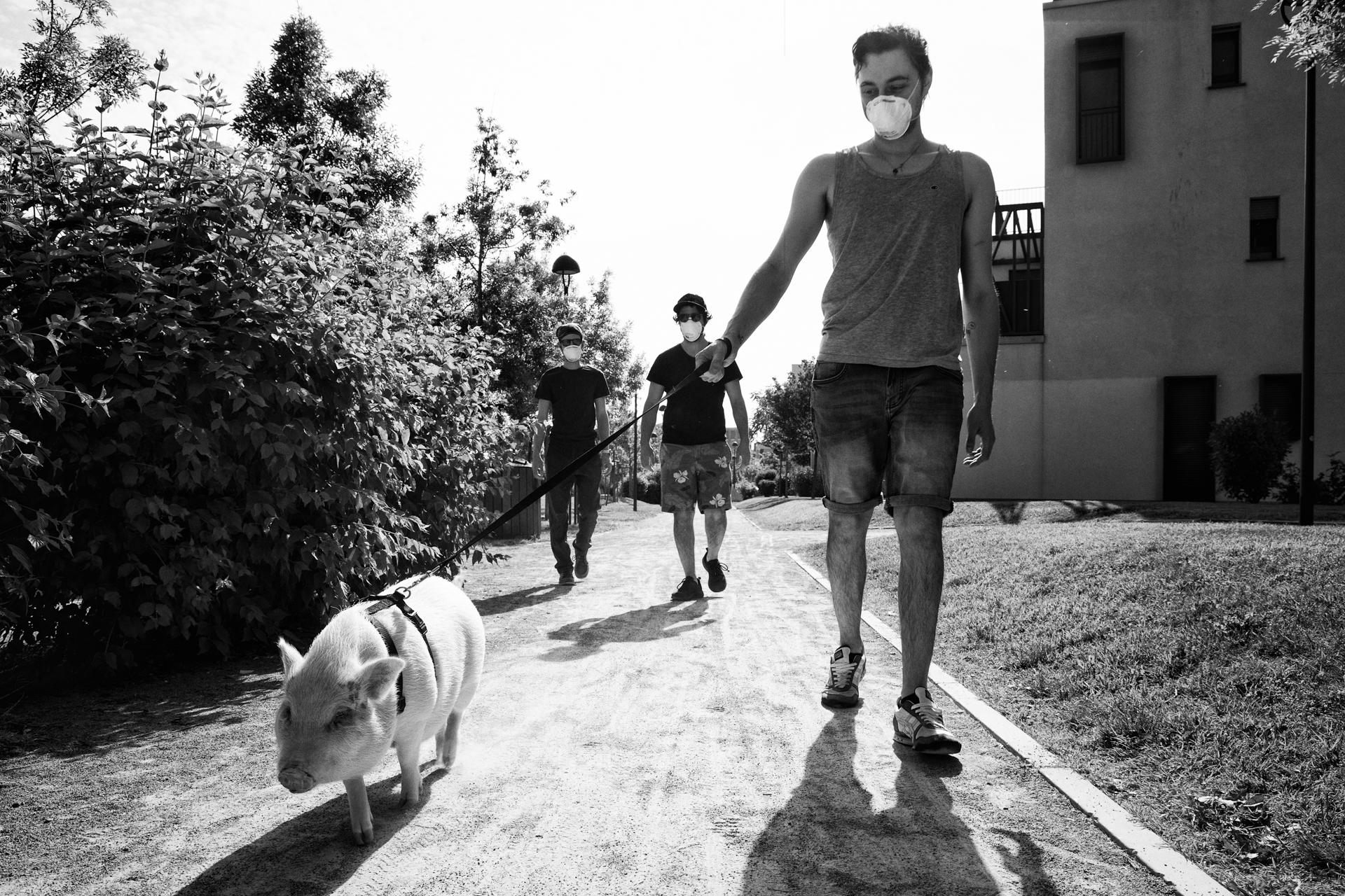 Spiragli di normalità di Silvia Milanesi Corso Avanzato, Il ritorno alla normalità dopo la prima fase della pandemia di Covid-19 nel quartiere milanese di Figino nelle fotografie di SIlvia Milanesi