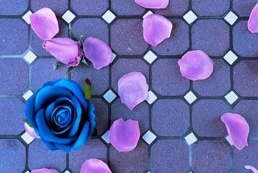 © Antonela Fabbreti | Corso Base di Fotografia